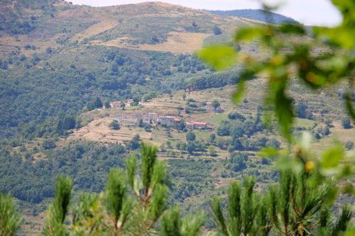 balade-mont-ardeche-valllee-eyrieux-saint-cierge