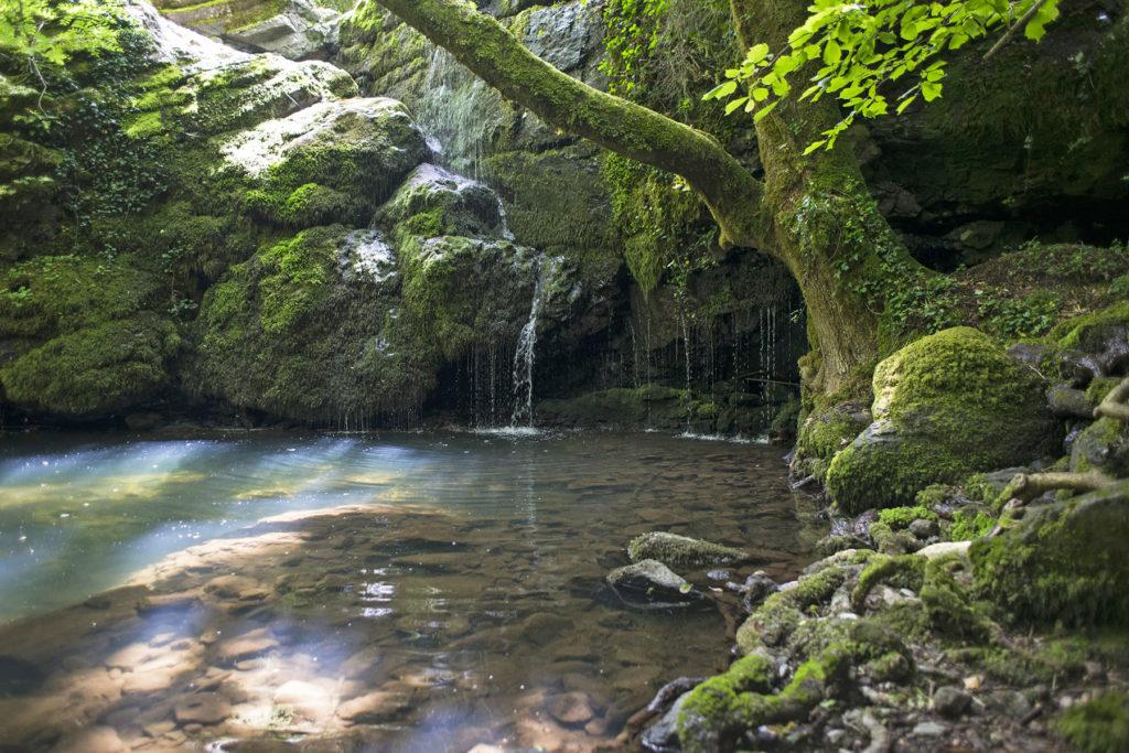 riviere-montagne-foret-nature-ardeche