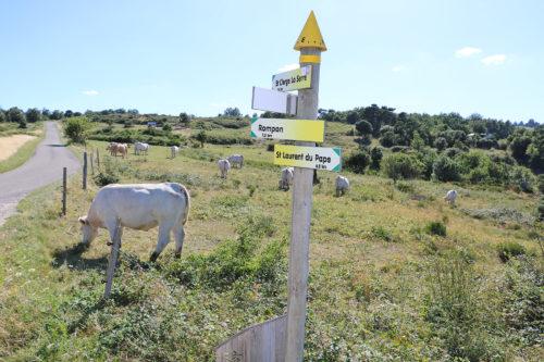 sentier-randonnee-saint-cierge-la-serre-campagne-ardeche