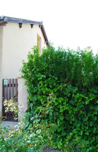 gîte Les Echamps, Les Ollières-Sur-Eyrieux, Ardèche Buissonnière.