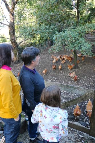 Bienvenue à la ferme du Clos Long à Saint Priest, Ardèche